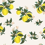 Citrus Blossom in Lemon | Rayon